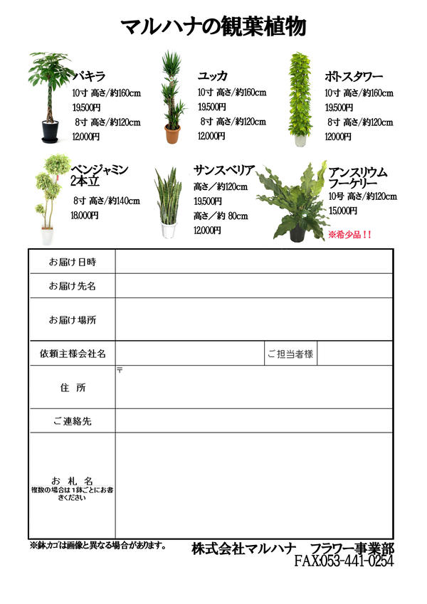 観葉植物カタログ.jpg