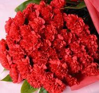 母の日カーネーション50本の花束