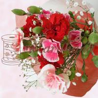 母の日『SPカーネ』送料無料 スプレーカーネーション+カスミソウ 配達日指定可!生花花束 花 フラワー ギフト
