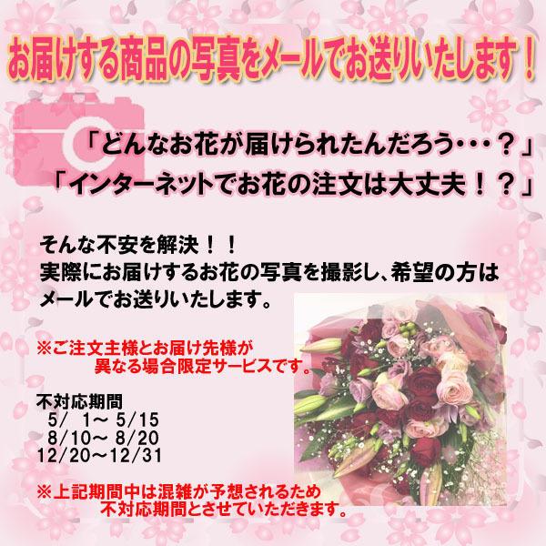 画像サービス2.jpg